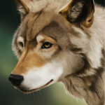 Photoshop-tutorial-digital-painting-wolf