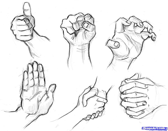 best collection of step by step tutorials on how to draw