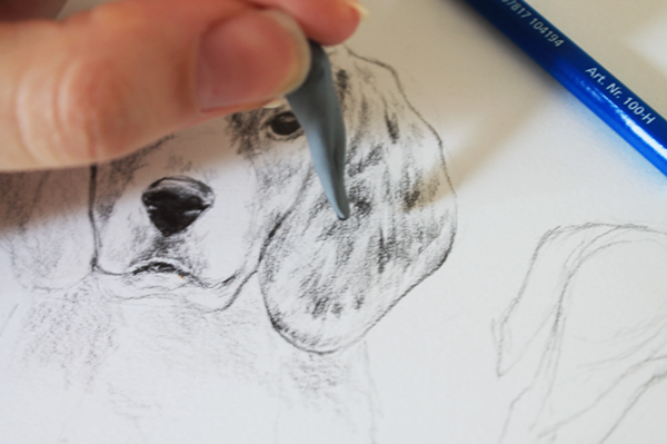 drawing a dog tutorial